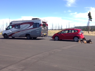 RV with Honda in two and two dogs sitting behind car