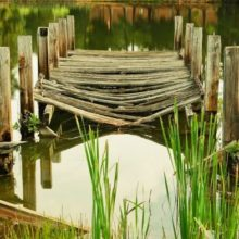 broken wooden bridge over water
