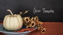 pumpkin and words give thanks