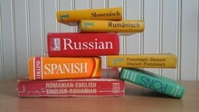 dictionaries in different languages in pile