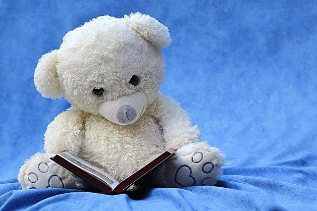 teddy bear reading book
