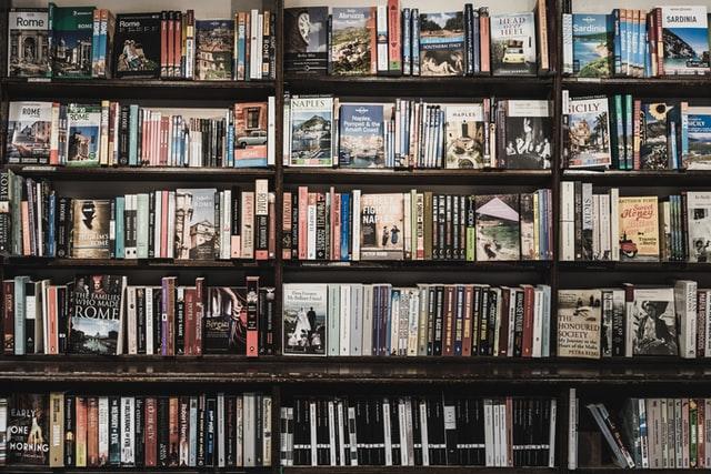 lots of travel books on bookshelf